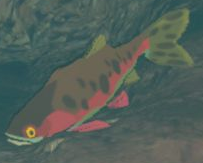 BotW Sizzlefin Trout Model.png
