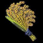 BotW Hylian Rice Icon.png