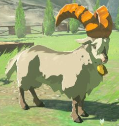 BotW White Goat Model.png