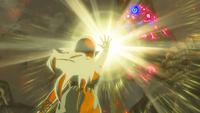BotW Zelda's Awakening.png