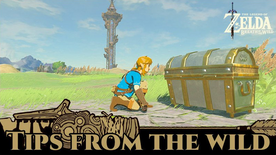 BotW Tips from the Wild Banner 16.png
