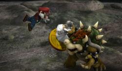 Mario and Zelda as a trophy.jpg