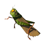 BotW Restless Cricket Icon.png