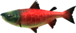 MM3D Postal Salmon Model.png