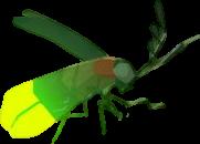 BotW Sunset Firefly Model.png