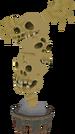TWW Skull Tower Idol Model.png