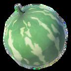 BotW Hydromelon Icon.png
