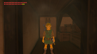 BotW Tunic of the Wild Model.png