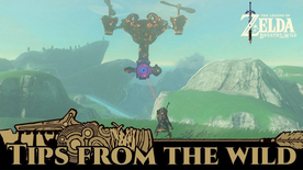 BotW Tips from the Wild Banner 21.png