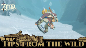 BotW Tips from the Wild Banner 06.png