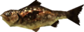 MM3D Fragrant Reekfish Model.png