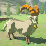 BotW Hyrule Compendium White Goat.png