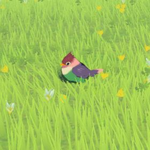 BotW Hyrule Compendium Rainbow Sparrow.png