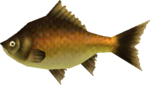 MM3D Groovy Carp Model.png
