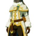 HWAoC Zelda's Winter Clothes Icon.png