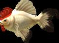 MM3D Cuccofish Model.png