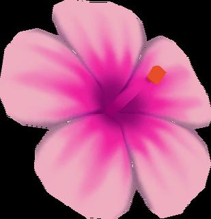 LANS Hibiscus Model.png