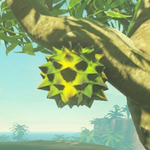 BotW Hyrule Compendium Hearty Durian.png
