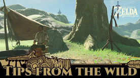 BotW Tips from the Wild Banner 15.png