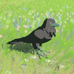 BotW Hyrule Compendium Mountain Crow.png