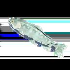 BotW Frozen Trout Icon.png