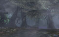 Faron Woods 2.jpg
