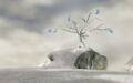 Snowpeak Top.jpg