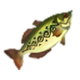 HWDE Hyrule Bass Food Icon.png