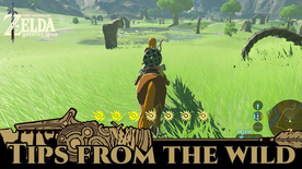 BotW Tips from the Wild Banner 17.png