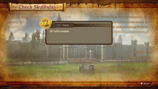 HWDE Check Skulltulas.png