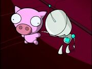 Rubber Piggy.jpg