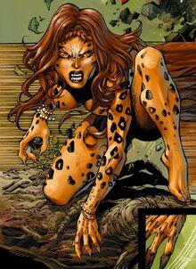 2676701-cheetah9a.jpg