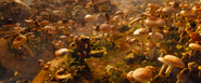 MushroomPlanet