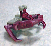 Crabraster