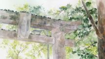 Toyotamahime Shrine Torii