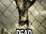 Dead Reckoning/Temporada 2
