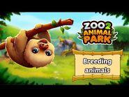 🐼 Breed cute animal babies in Zoo 2- Animal Park 🐻🐨