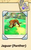 Jaguar (Panther).jpg