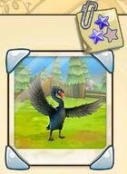 Black Swan Collections.jpg