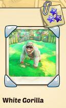 White Gorilla.jpg