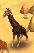 Giraf (Black)