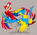 Alanzo jackie birds