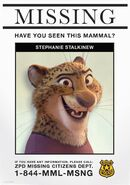 Stephanie Stalkinew missing poster