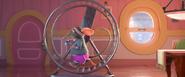 Mice Running