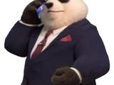 Panda news anchor