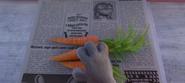 Bunnyburrow Beacon with Carrots