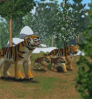 ZT1 - Siberian Tiger.png