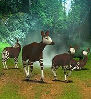 Okapi Plaque.png
