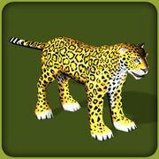 Jaguar Adult M.jpg