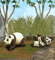 ZT1 - Giant Panda.png